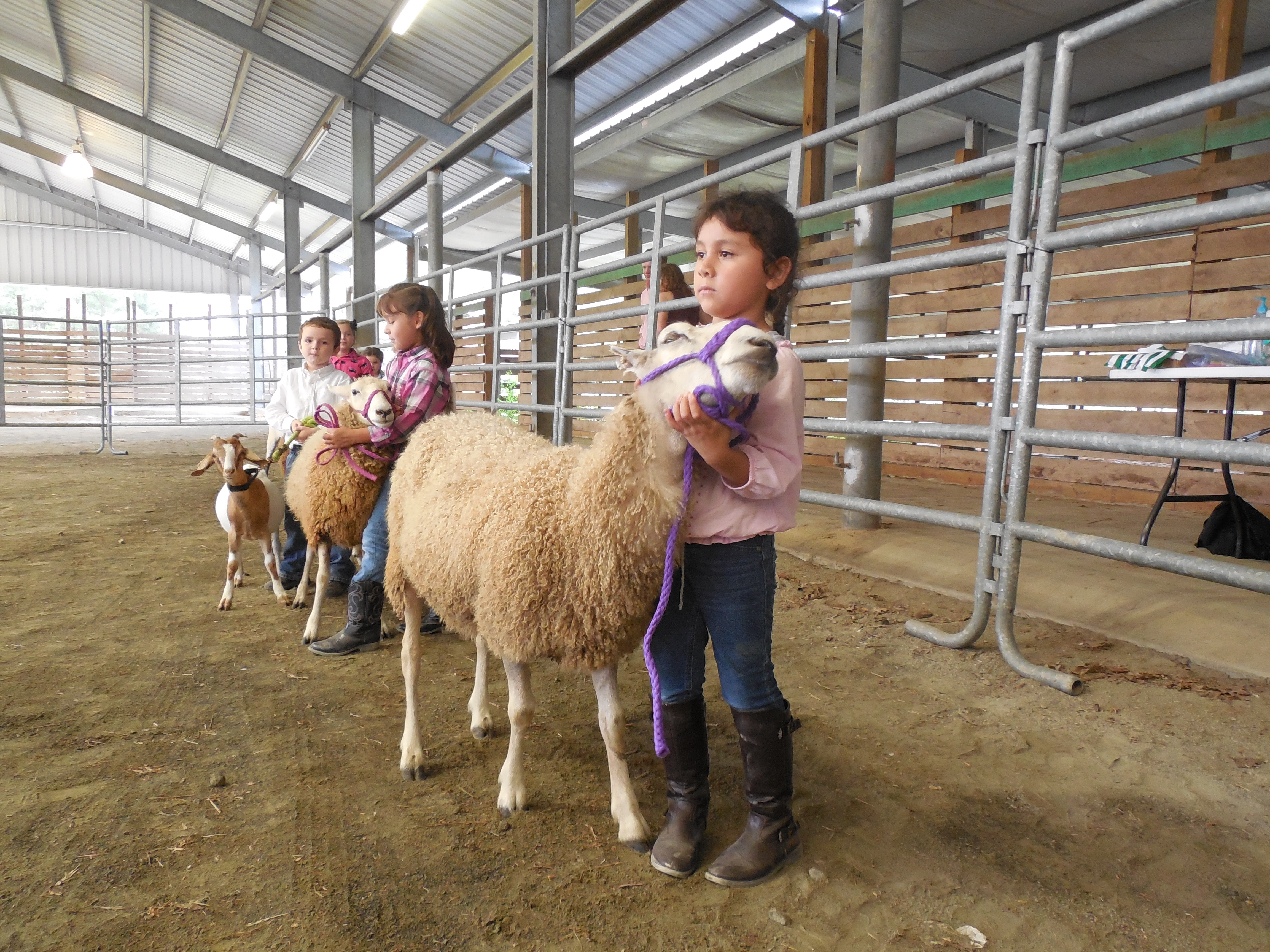 Image of children with livestock