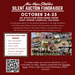 Cover photo for NC 4-H Horse Program Emergency Fund Silent Auction