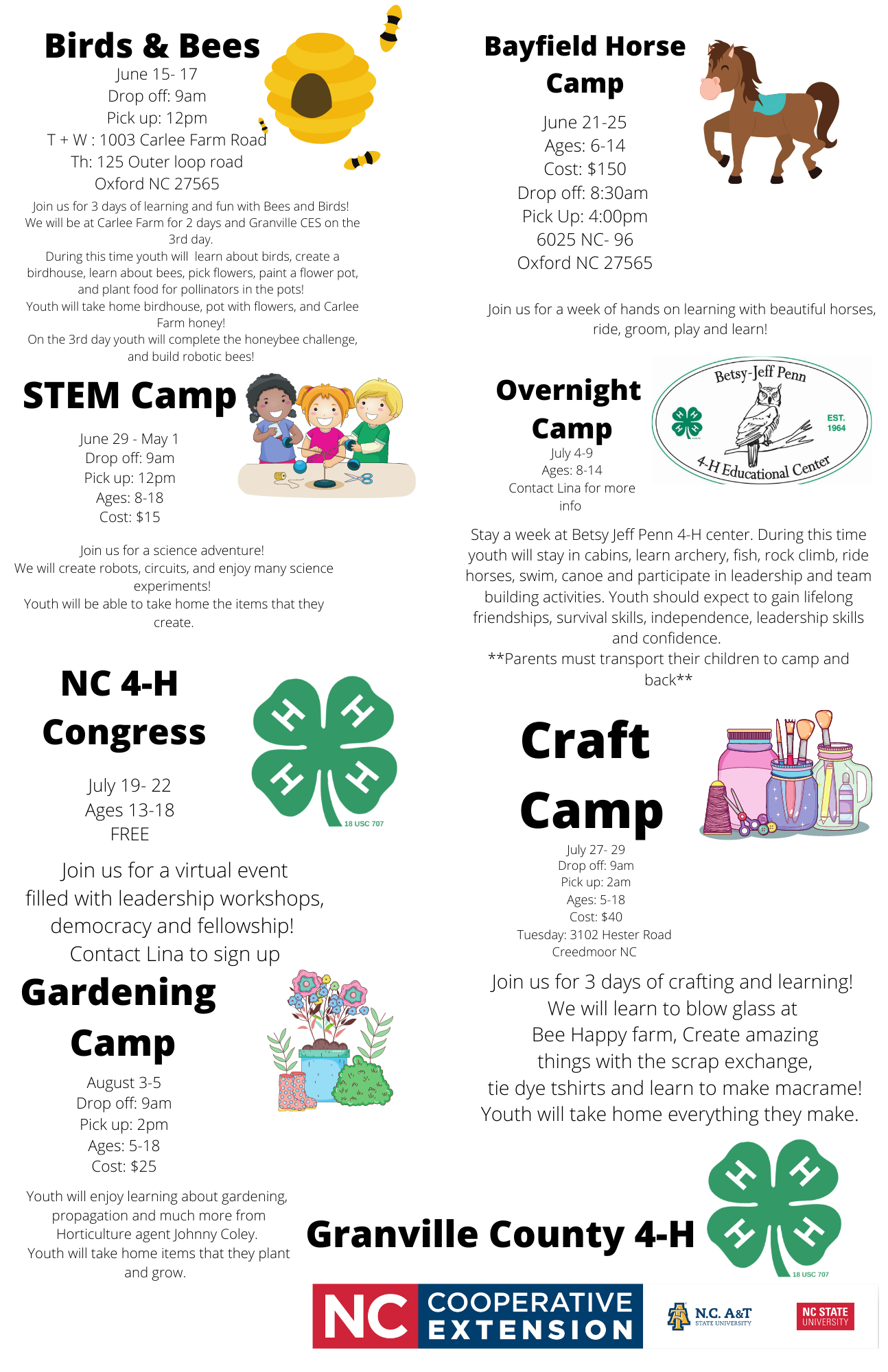 Summer Fun camps flyer image